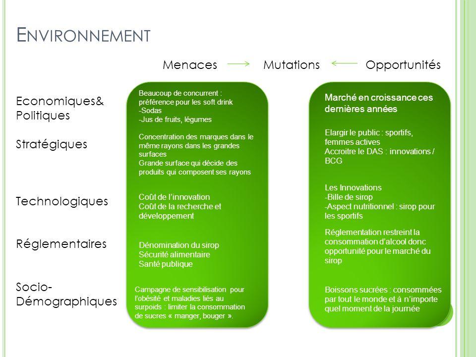 Environnement Menaces Mutations Opportunités Economiques& Politiques