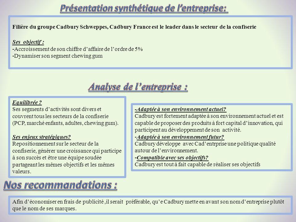 Présentation synthétique de l'entreprise: Analyse de l'entreprise :