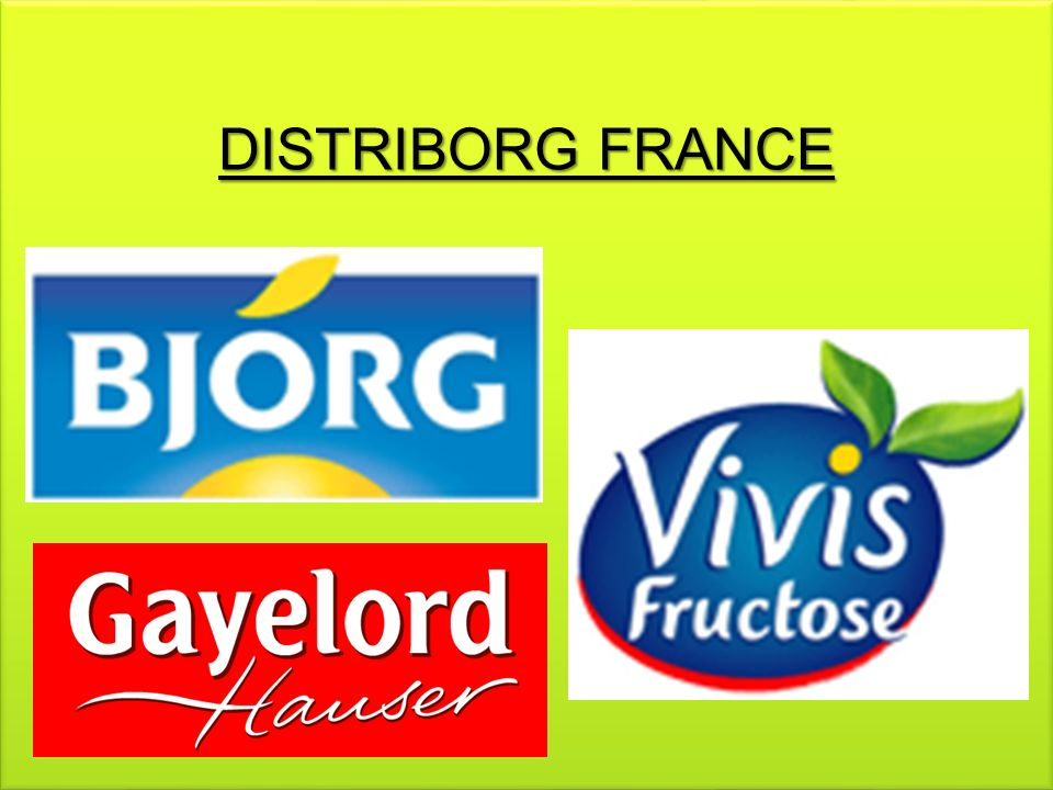 DISTRIBORG FRANCE