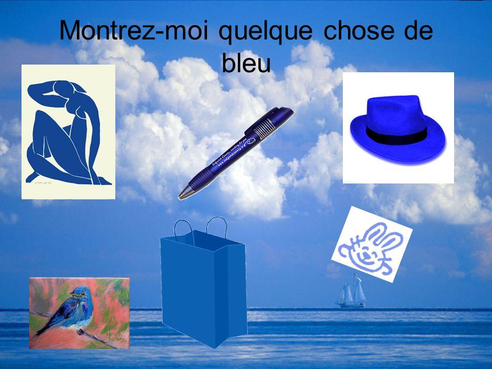 Montrez-moi quelque chose de bleu