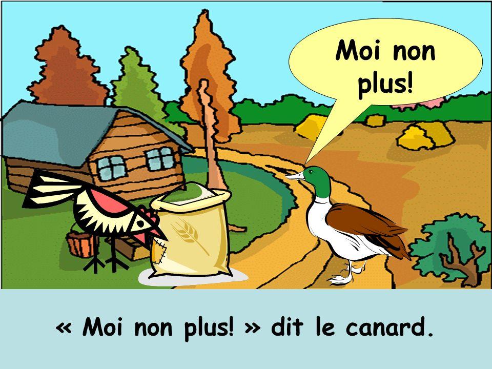 « Moi non plus! » dit le canard.