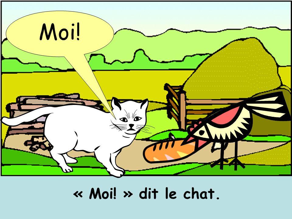 Moi! « Moi! » dit le chat.