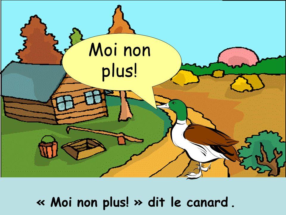 « Moi non plus! » dit le canard .