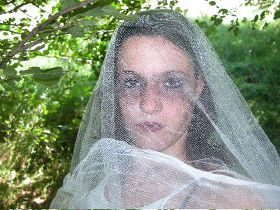 La Dame blanche de Montpinchon Suivant