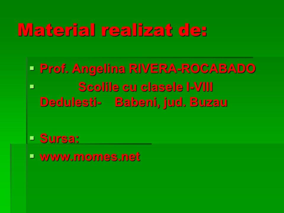Material realizat de: Prof. Angelina RIVERA-ROCABADO