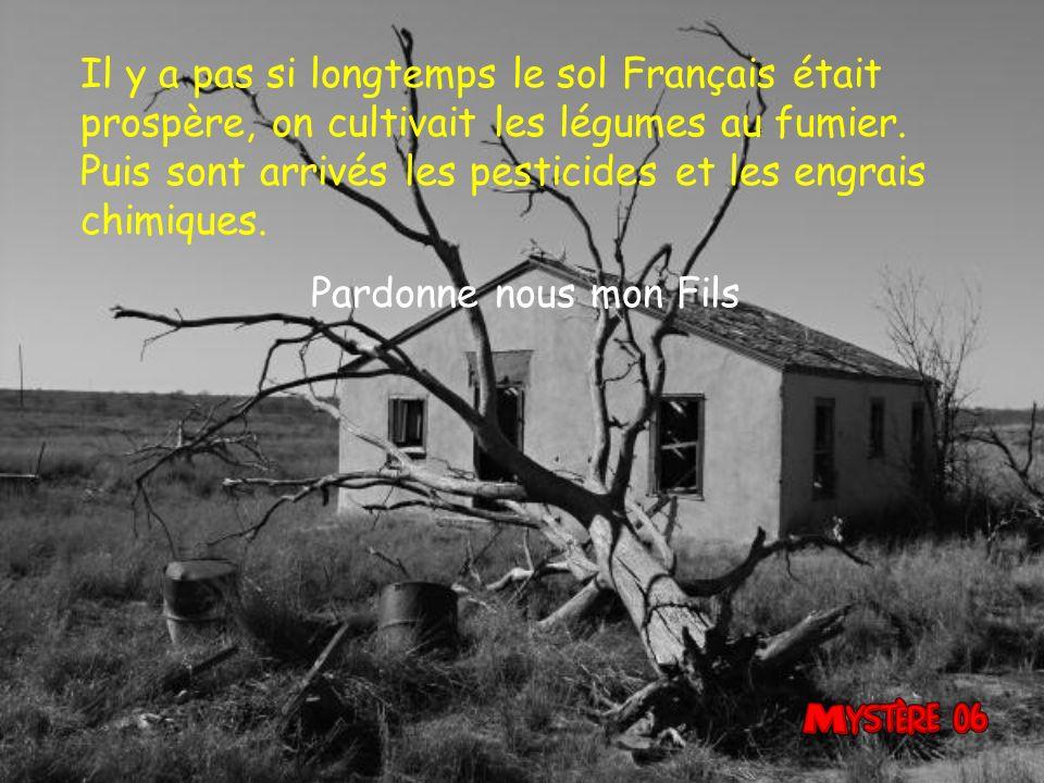 Il y a pas si longtemps le sol Français était prospère, on cultivait les légumes au fumier. Puis sont arrivés les pesticides et les engrais chimiques.