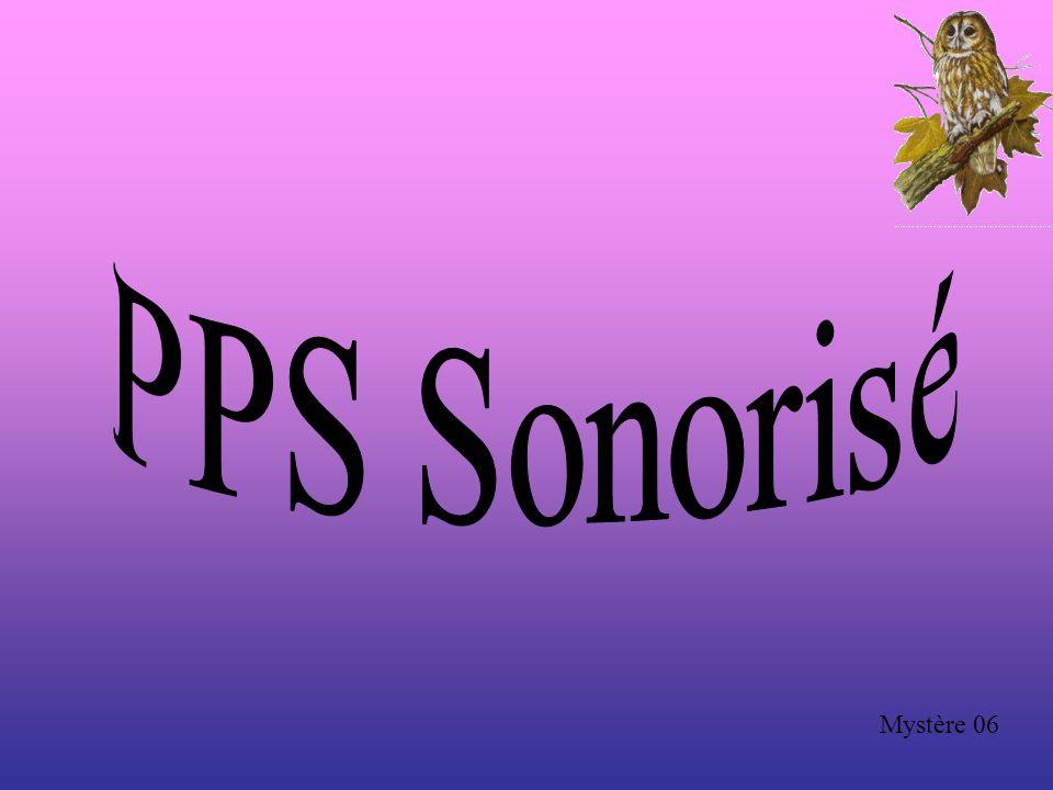 PPS Sonorisé Mystère 06