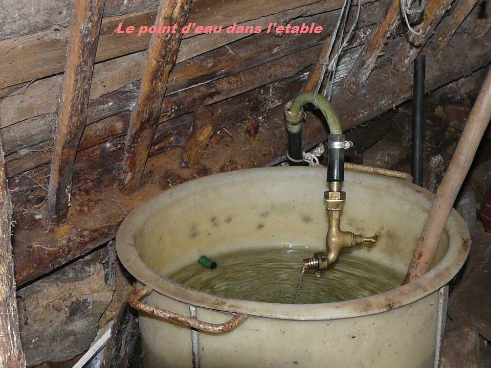 Le point d'eau dans l'etable