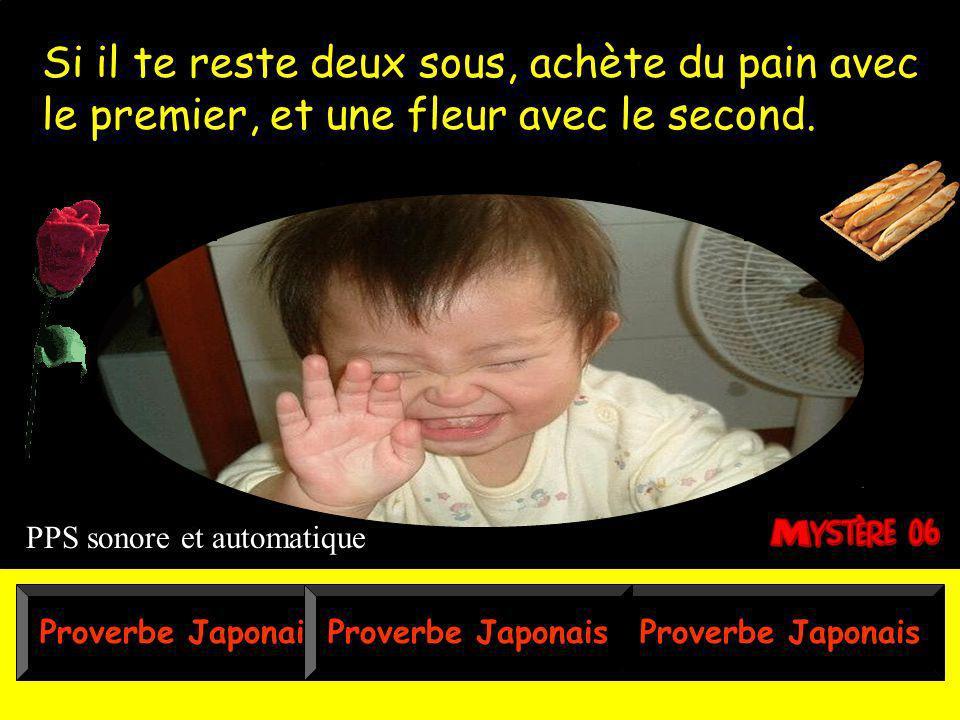 proverbe japonais rencontre