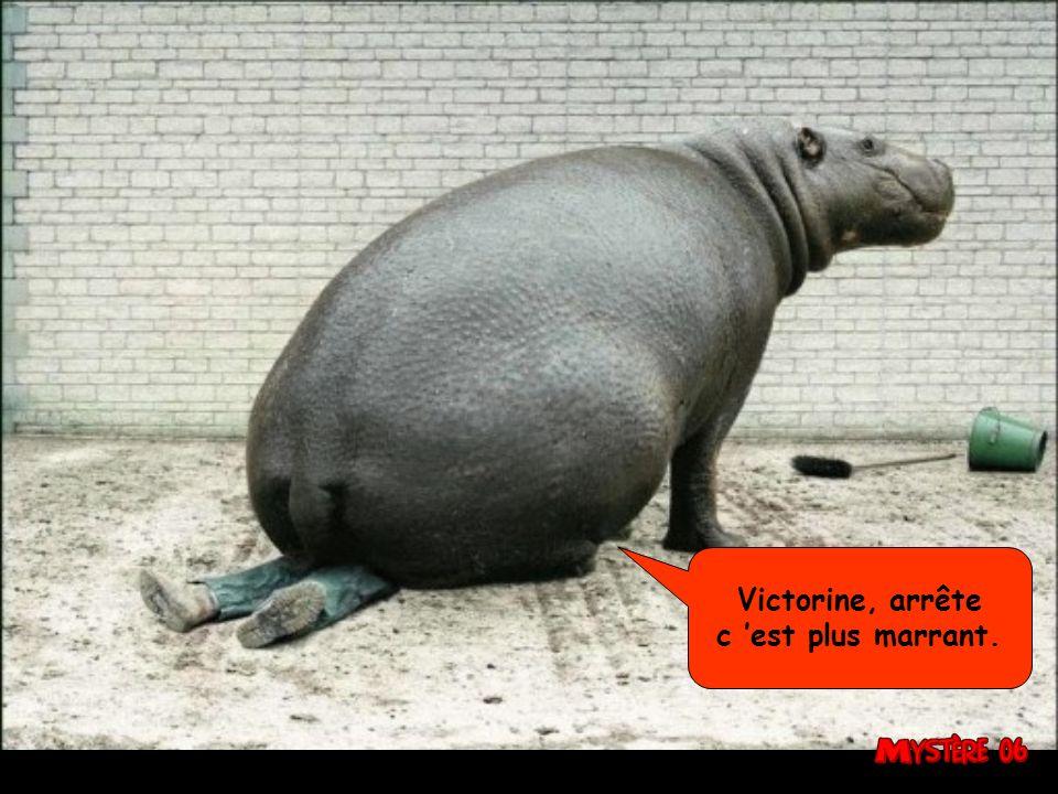 Victorine, arrête c 'est plus marrant.