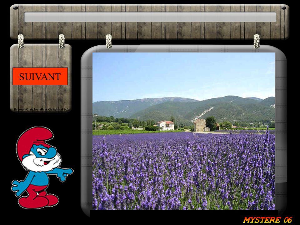 SUIVANT Du fond de la Provence, sous le mistral elle danse.
