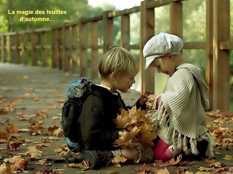 La magie des feuilles d'automne…