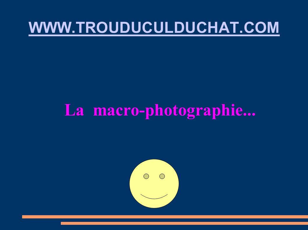 La macro-photographie...