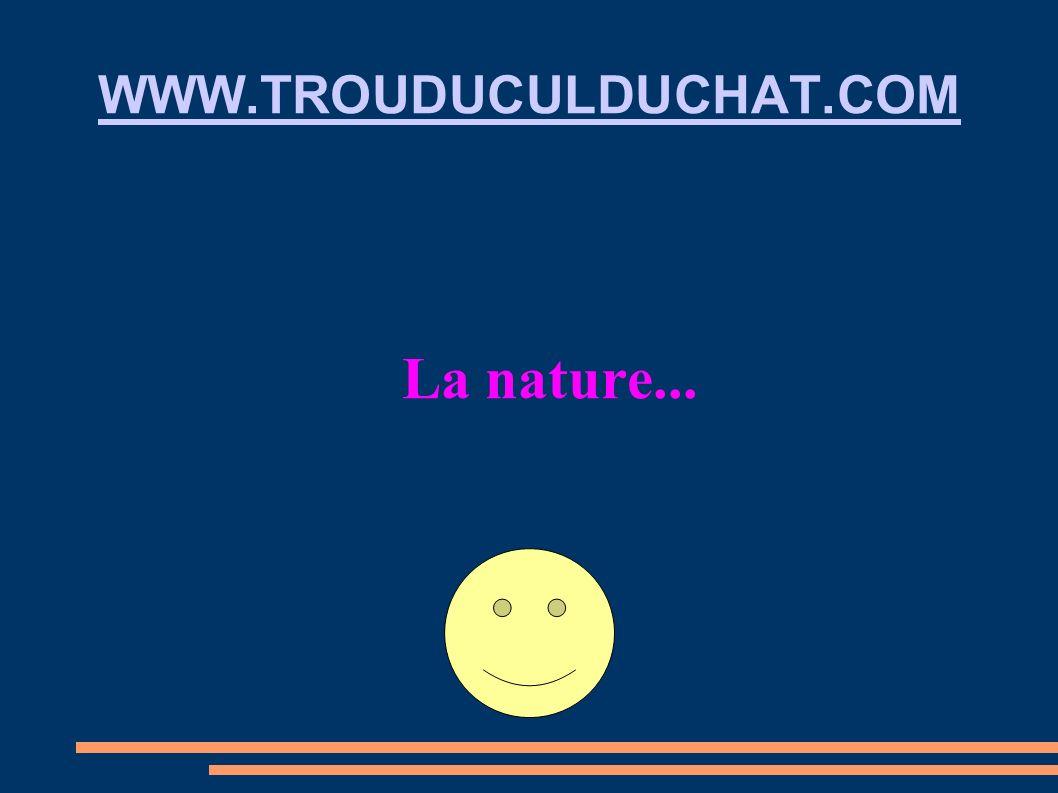 WWW.TROUDUCULDUCHAT.COM La nature...