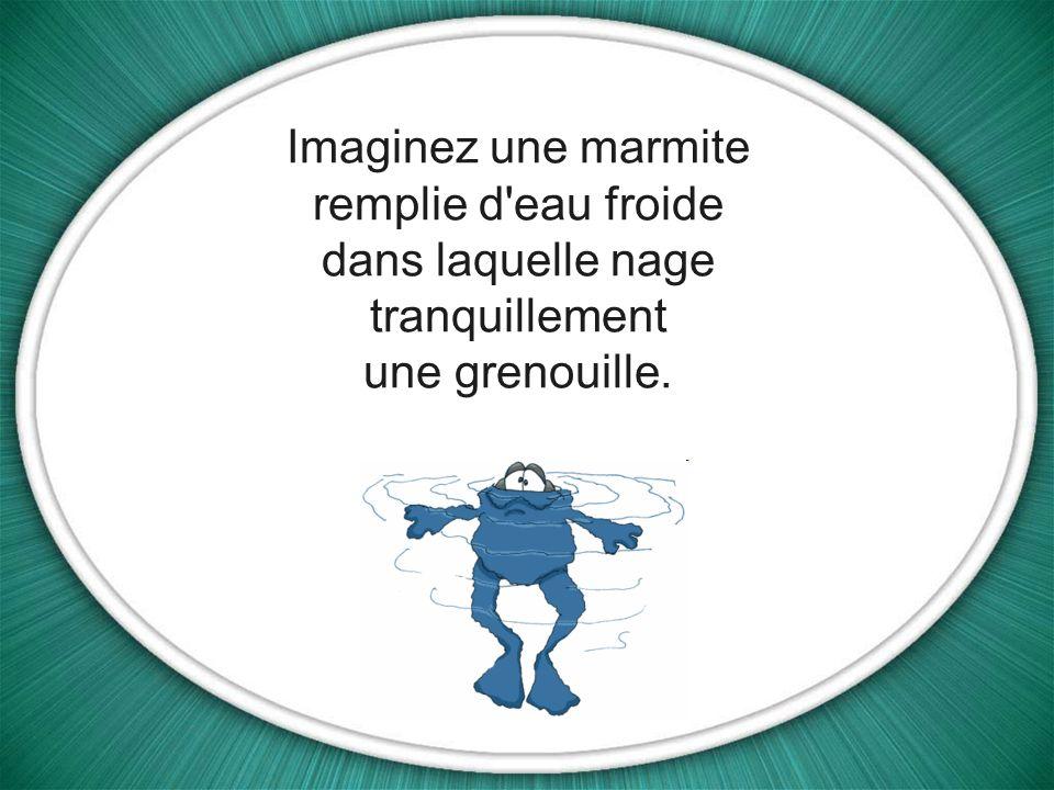 Imaginez une marmite remplie d eau froide dans laquelle nage tranquillement une grenouille.