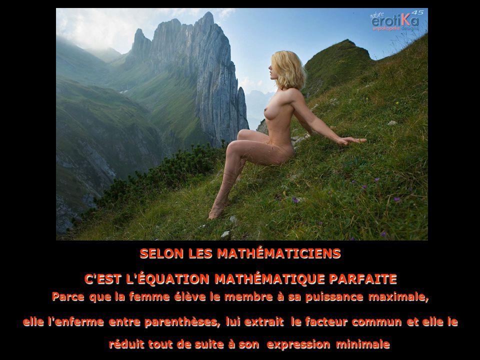 SELON LES MATHÉMATICIENS C EST L ÉQUATION MATHÉMATIQUE PARFAITE