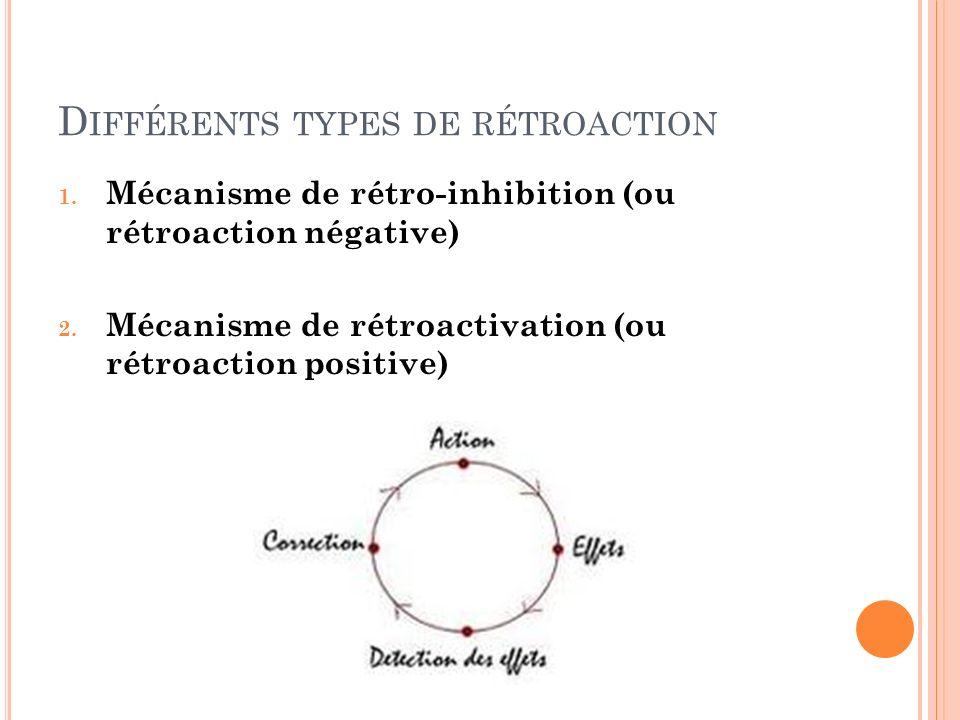 Différents types de rétroaction