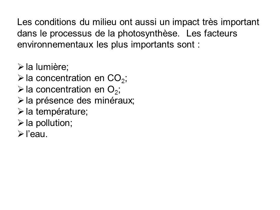 Les conditions du milieu ont aussi un impact très important dans le processus de la photosynthèse. Les facteurs environnementaux les plus importants sont :