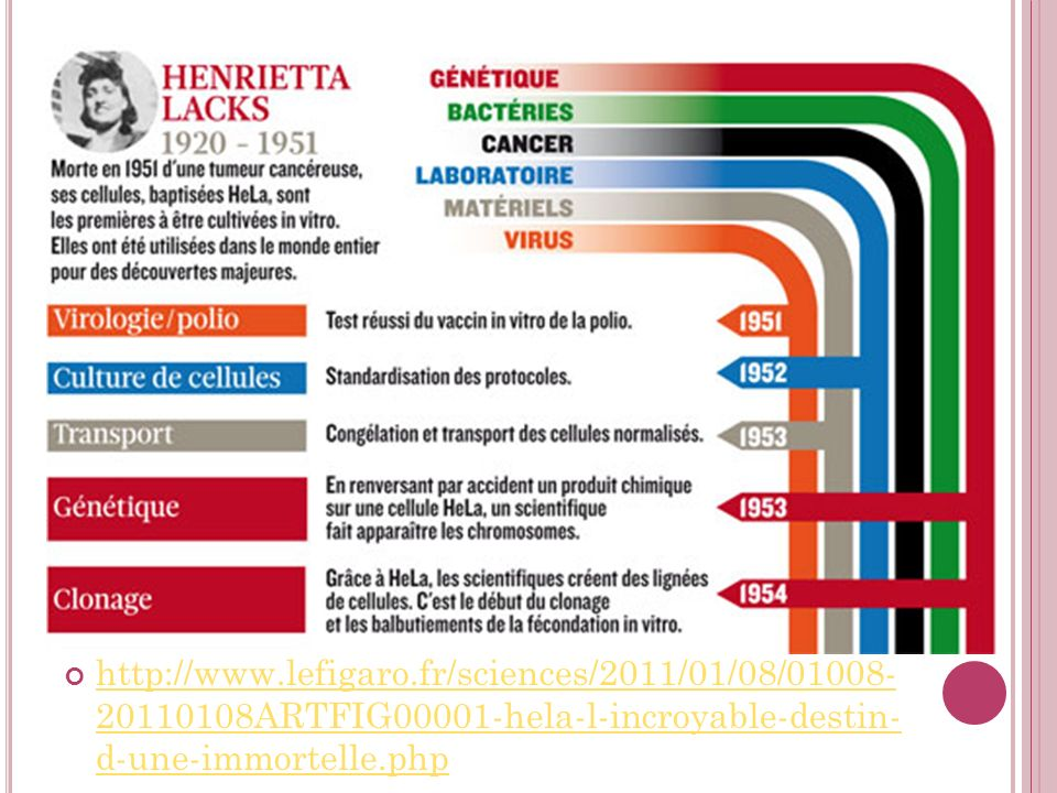 http://www.lefigaro.fr/sciences/2011/01/08/01008- 20110108ARTFIG00001-hela-l-incroyable-destin- d-une-immortelle.php