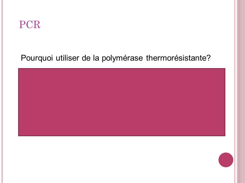 PCR Pourquoi utiliser de la polymérase thermorésistante