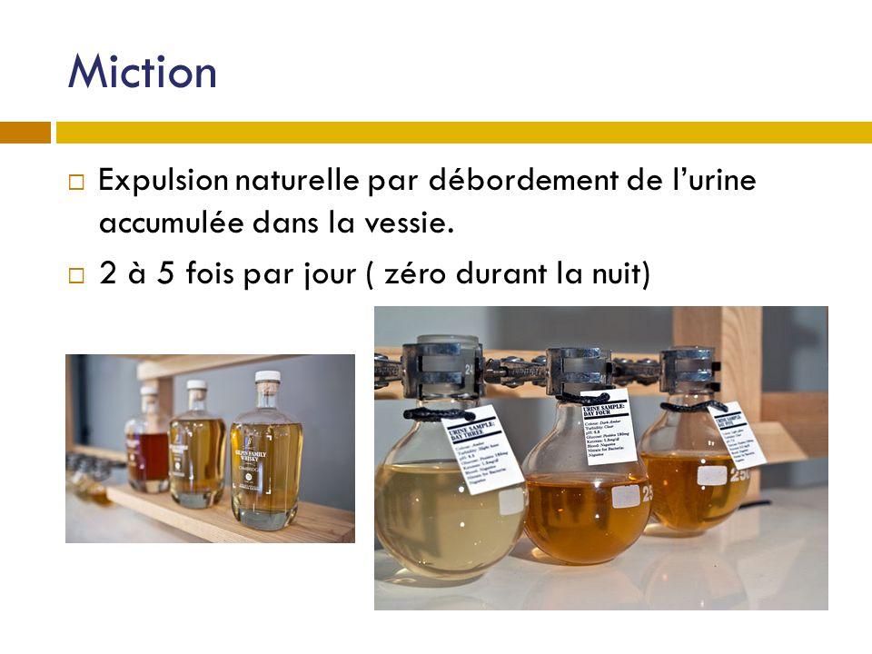 Miction Expulsion naturelle par débordement de l'urine accumulée dans la vessie.