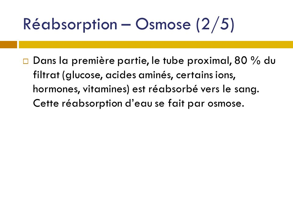 Réabsorption – Osmose (2/5)