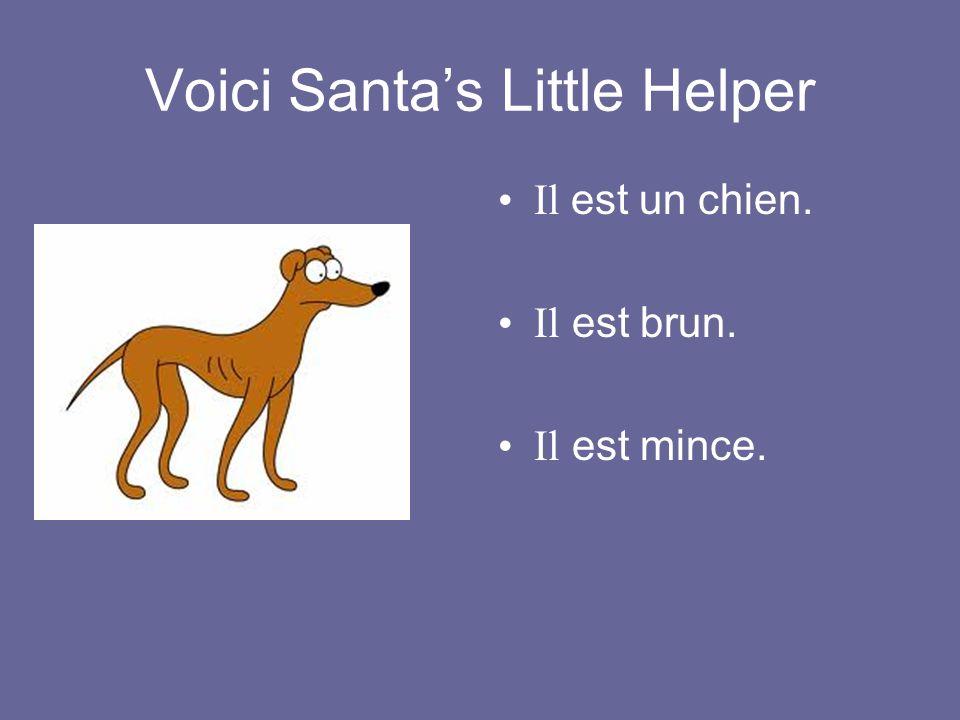 Voici Santa's Little Helper