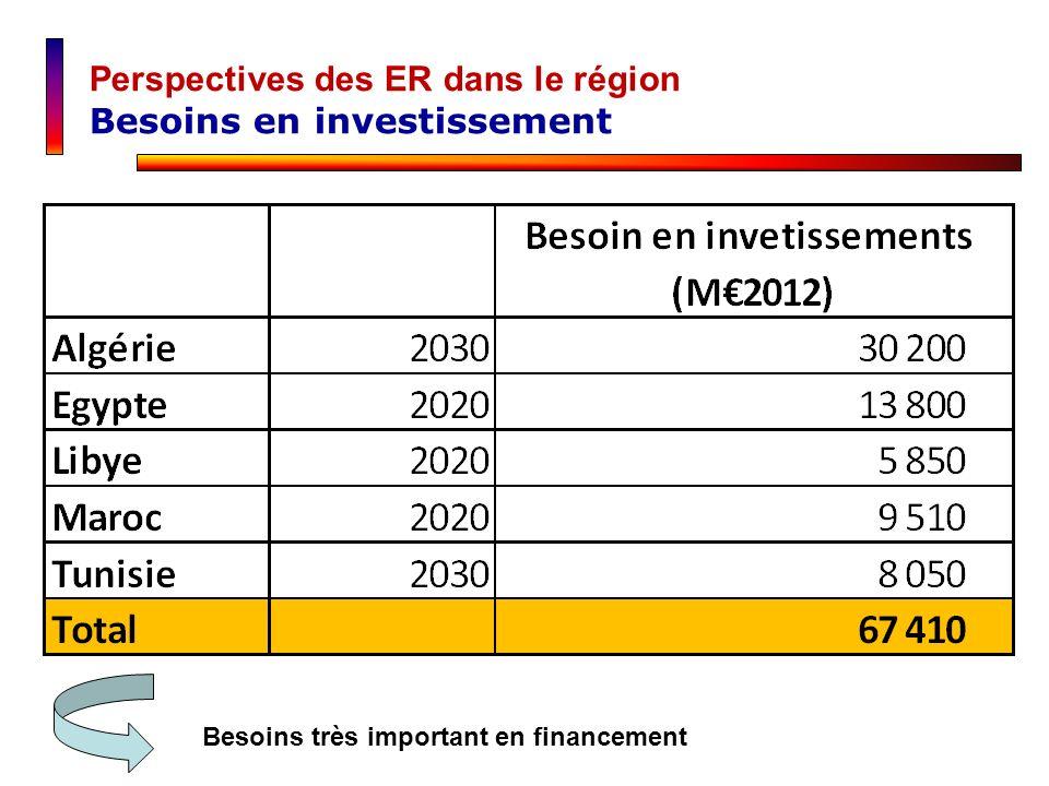 Perspectives des ER dans le région Besoins en investissement
