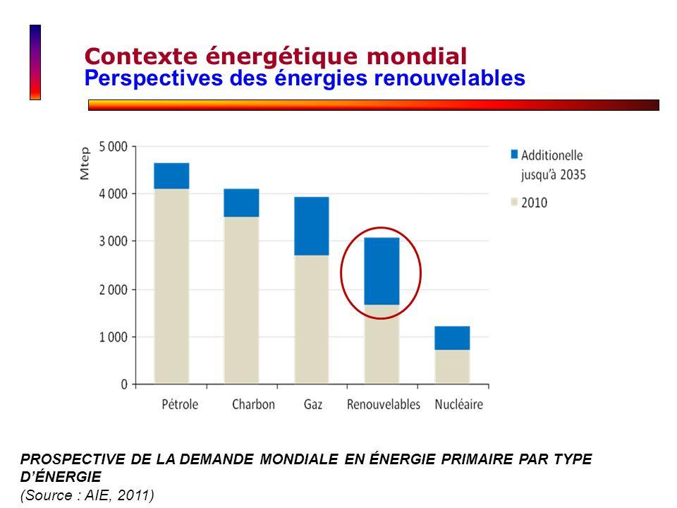 Contexte énergétique mondial Perspectives des énergies renouvelables