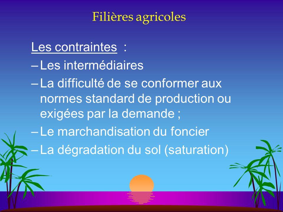 Filières agricoles Les contraintes : Les intermédiaires.