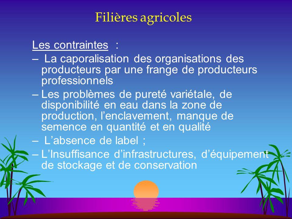 Filières agricoles Les contraintes :