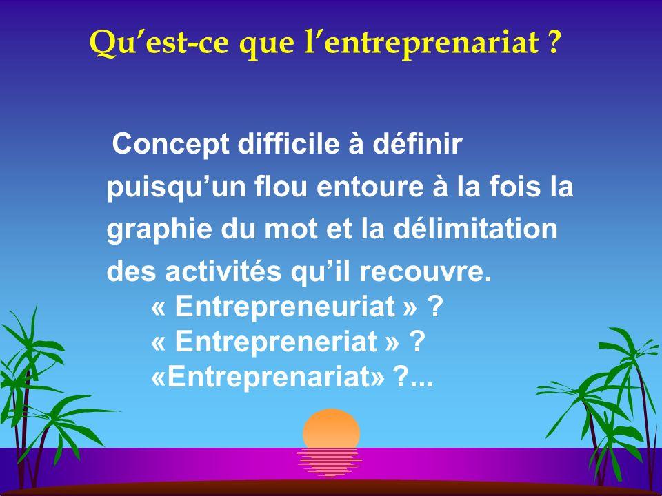 Qu'est-ce que l'entreprenariat