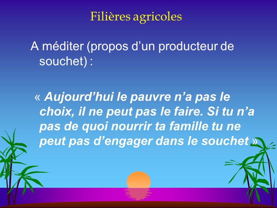 Filières agricoles A méditer (propos d'un producteur de souchet) :