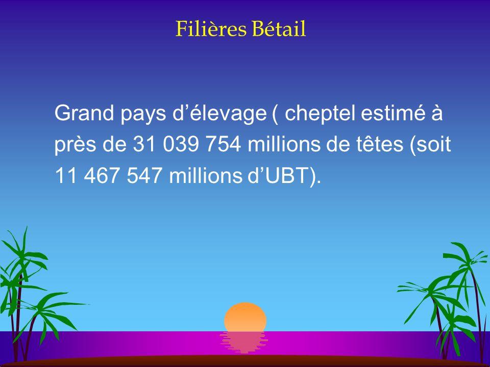 Filières Bétail Grand pays d'élevage ( cheptel estimé à. près de 31 039 754 millions de têtes (soit.