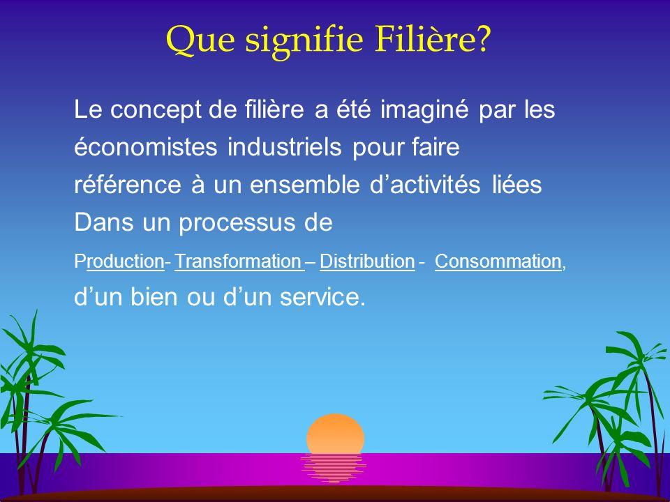 Que signifie Filière Le concept de filière a été imaginé par les