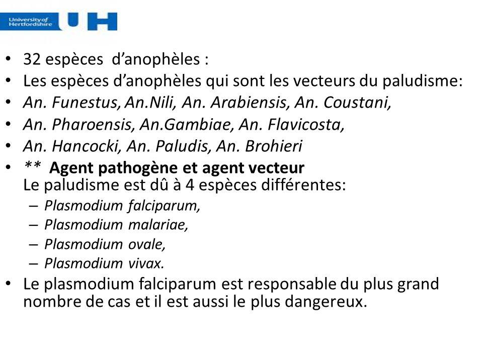 Les espèces d'anophèles qui sont les vecteurs du paludisme: