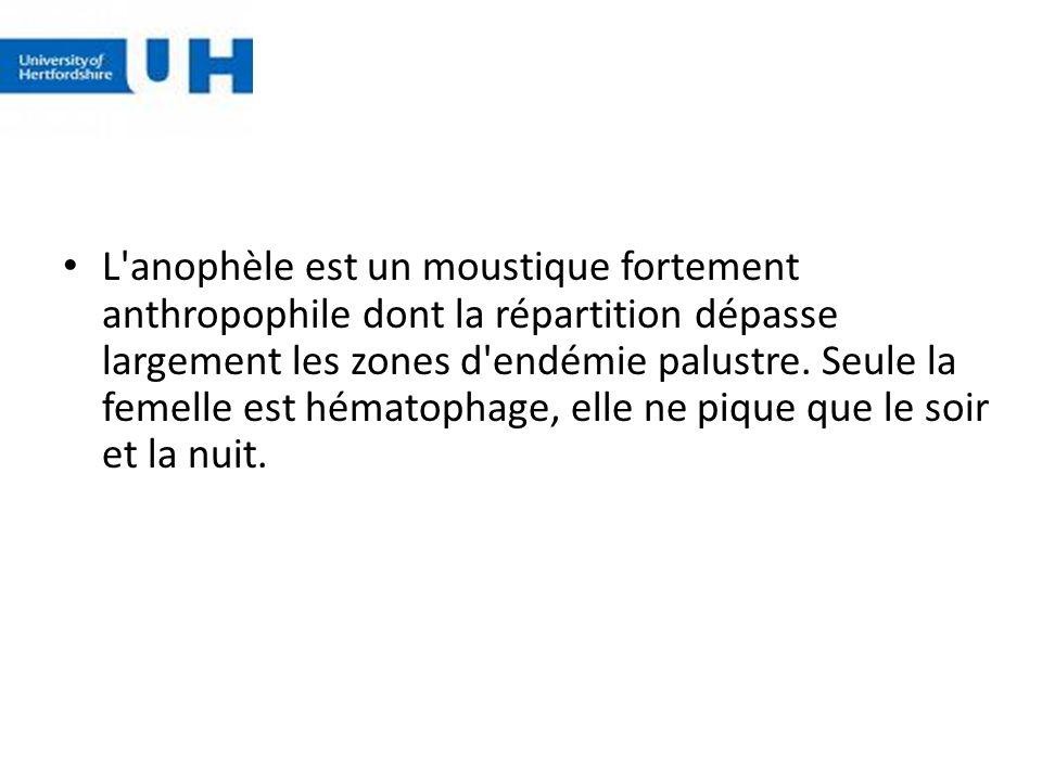 L anophèle est un moustique fortement anthropophile dont la répartition dépasse largement les zones d endémie palustre.