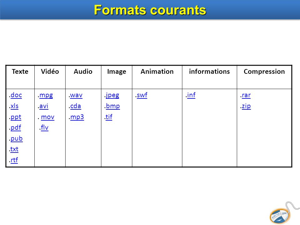 Formats courants Texte Vidéo Audio Image Animation informations