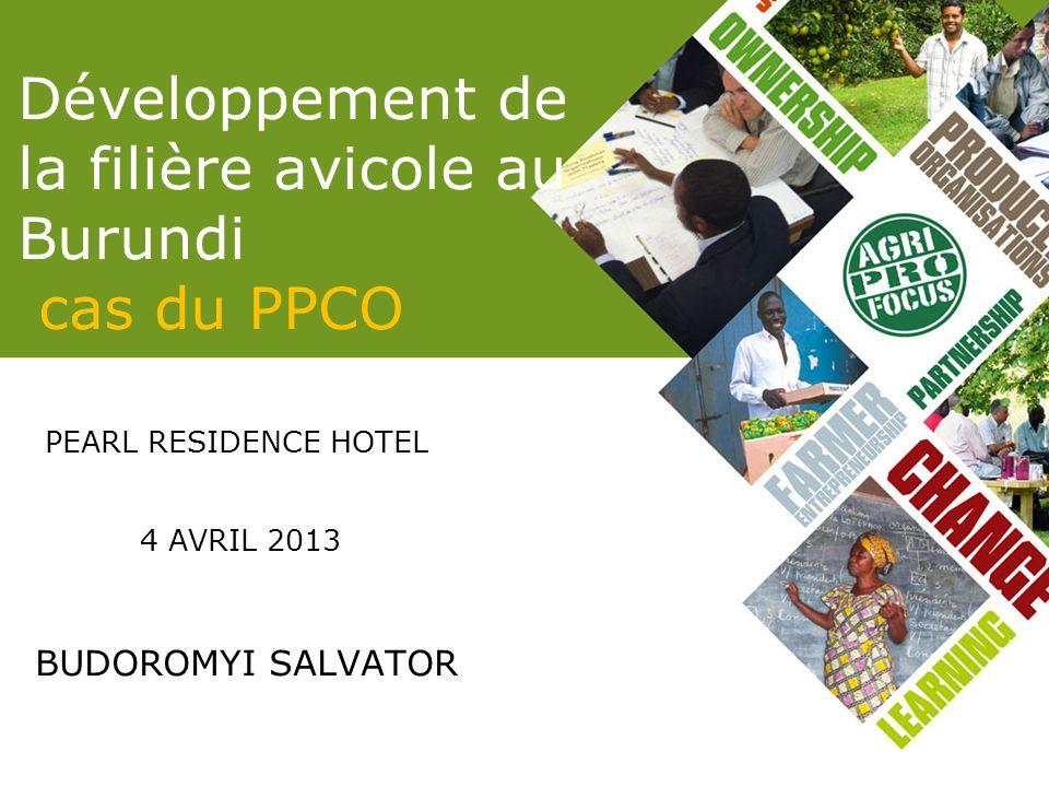 Développement de la filière avicole au Burundi cas du PPCO
