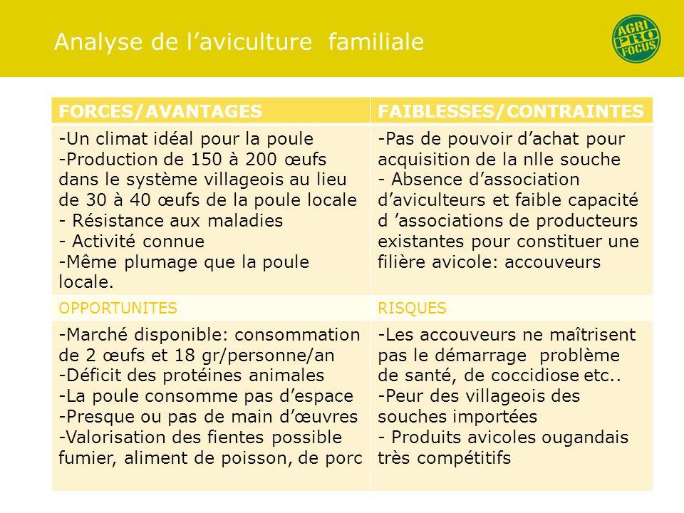 Analyse de l'aviculture familiale