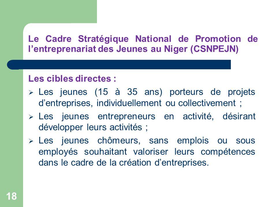 Le Cadre Stratégique National de Promotion de l'entreprenariat des Jeunes au Niger (CSNPEJN)
