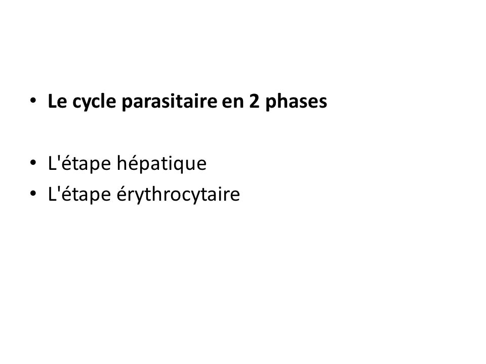 Le cycle parasitaire en 2 phases