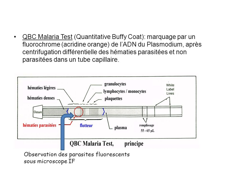 QBC Malaria Test (Quantitative Buffy Coat): marquage par un fluorochrome (acridine orange) de l'ADN du Plasmodium, après centrifugation différentielle des hématies parasitées et non parasitées dans un tube capillaire.