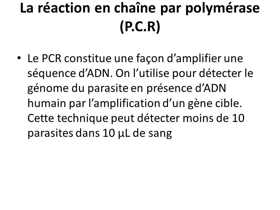 La réaction en chaîne par polymérase (P.C.R)