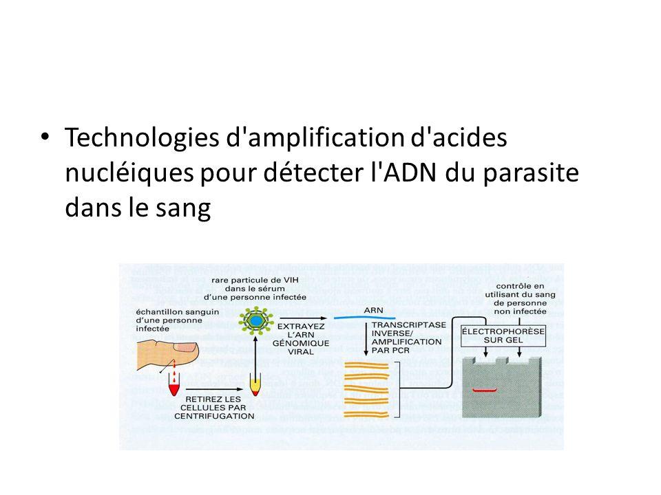 Technologies d amplification d acides nucléiques pour détecter l ADN du parasite dans le sang