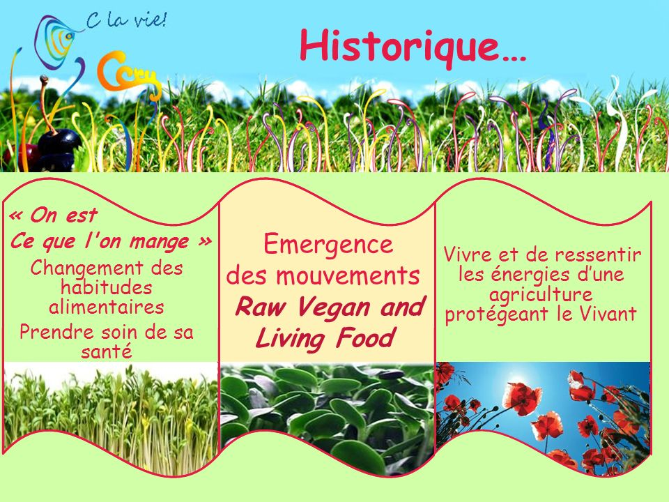 Historique… Emergence des mouvements Raw Vegan and Living Food