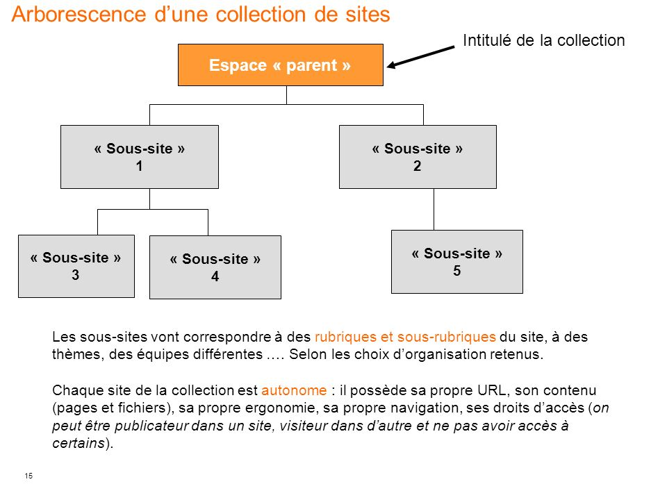 Arborescence d'une collection de sites