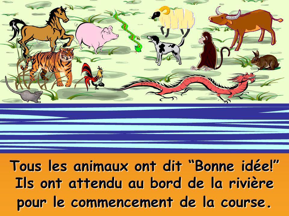 Tous les animaux ont dit Bonne idée