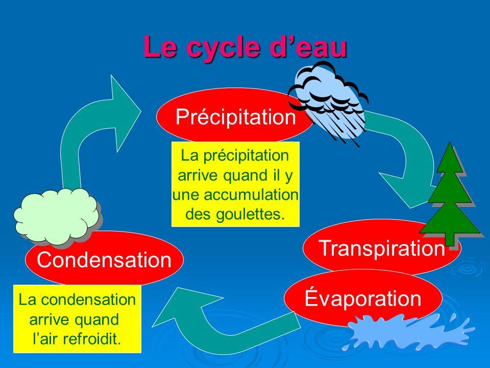 Le cycle d'eau Précipitation Transpiration Condensation Évaporation