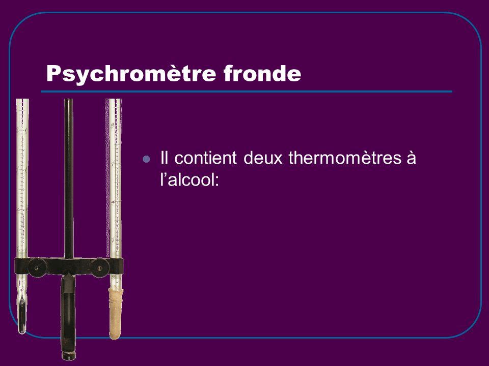Psychromètre fronde Il contient deux thermomètres à l'alcool: